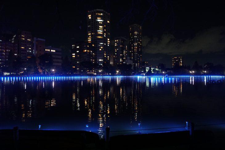 鈴木太朗・空間演出研究所による「ミナモミラー」 / TOKYO数寄フェス(2016, 17)にて