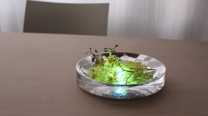研究室学生・大嶋光恵による「光る花」の演出