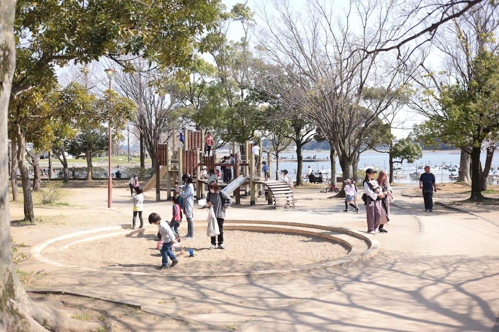 手賀沼公園の様子 (1)